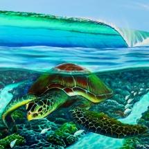 turtle-reef